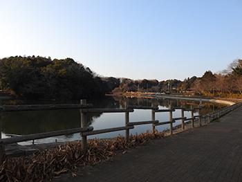 坂田ヶ池総合公園.jpg